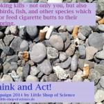 Beach_SmokingKills_LittleShopOfScience_2014